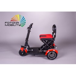 Folding 300W (Scooter para...
